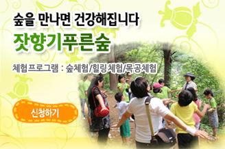 forest_banner_slide01