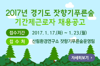 main_forest_banner_20170116